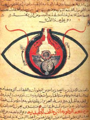 Строение глаза. Рукопись около 1200 года