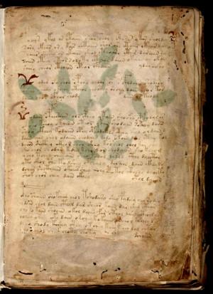 Манускрипт Войнича, написанный на неизвестном языке