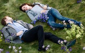 Такая сцена явилась во сне Стефани, после чего она решила написать роман