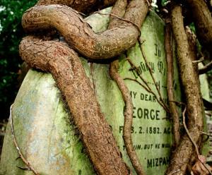 Заброшенное надгробие