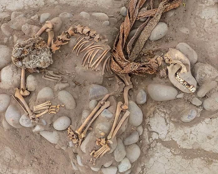 Собаки, жившие 1000 лет назад, были завернуты в ткани и похоронены рядом с людьми, возможно, как часть жертвы. Фото: Luckez Olmos