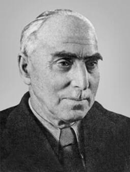 Профессор Александр Яковлевич Брюсов.