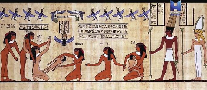 Ястреб – символ фараона для египтян